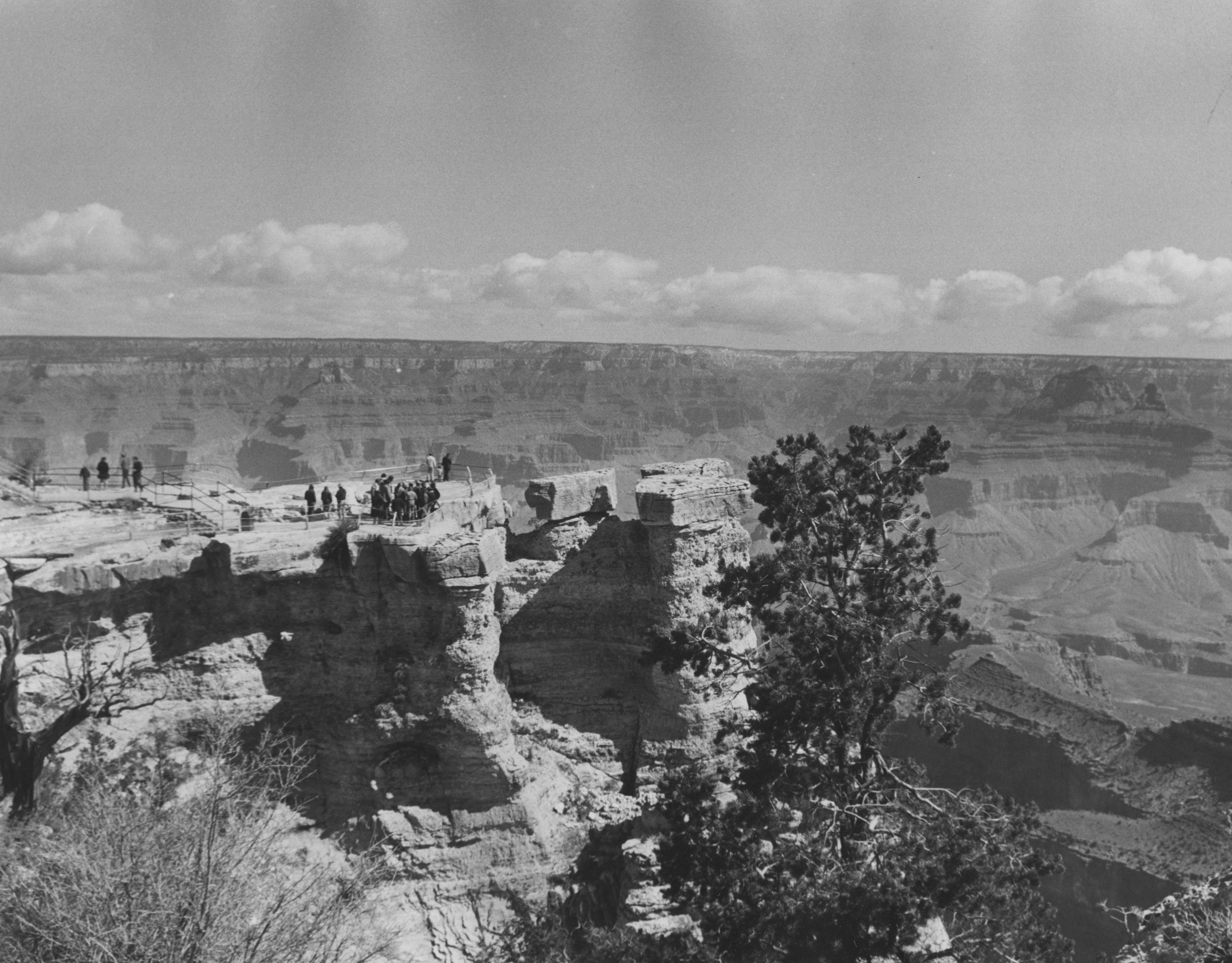 In 1973, DC science students took part in a Southwest Semester, an extended field trip from February to April, to study biology, botany, and geology in the US Southwest.  This photo is of DC's group at the Grand Canyon. The students were led by professors Mikula and Birk, and they visited not only Arizona but also New Mexico, southern California, and Big Bend National Park in Texas.